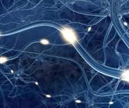 EEG Studio - Badania EEG, Trening EEG Biofeedback