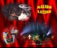 Gorący i niepowtarzalny zespół MALIBU LATINO