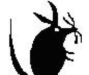 GRUTOX-Zakład dezynfekcji,tel:501333444,www.grutox.pl