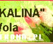 """Kwiaciarnia Stalowa Wola """"KALINA"""""""