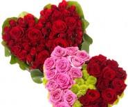 Kwiaciarnie Bielsko Biała Tychy Poczta galeria kwiatowa