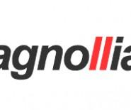 MAGNOLLIASOUND - Agencja Muzyczno-Multimedialna
