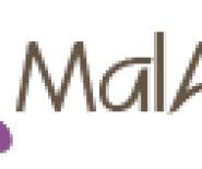 Malarts - artystyczne i dekoracyjne malowanie ścian