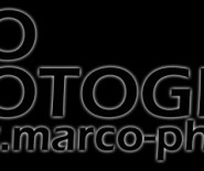 MARCO PHOTOGRAPHY