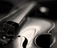 Oprawa muzyczna ślubów i innych uroczystości