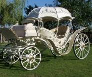 Piękna bryczka do ślubu Szczecin