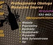 Profesjonalna Obsługa Muzyczna Imprez