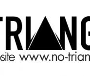 Projektowanie Wnętrz NoTriangle