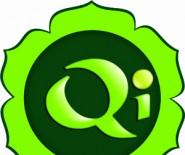 Qi Gabinet Akupresury i Masażu