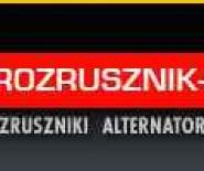 ROZRUSZNIK SERVICE