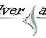 SILVER - ART