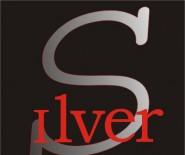 SILVER-STUDIO