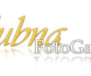 ŚlubnaFotoGaleria