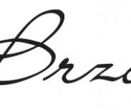 studio Brzoza - wyjątkowe zaproszenia ślubne i dodatki