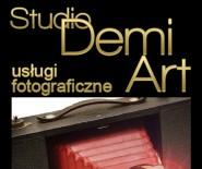 Studio Demi Art