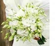 Studio florystyczne EUFLORIA