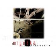 Studio Migafka. Pracownia Fotografii Kreacyjnej.