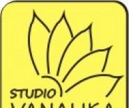 Studio VANALIKA - masaż ajurwedyjski w Poznaniu