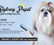 Stylowy Pupil - Salon Pielęgnacji Psów