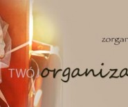 Twój Organizator