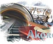 Zespół muzyczny Akord - na wesele, karnawał i inne imprezy