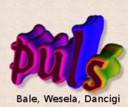 Zespół PULS