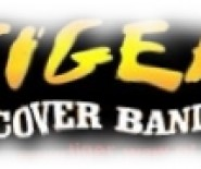 Zespół Tiger Band - +48.505.11.22.55 - www.tiger.band.pl