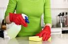 10 trików na domową czystość