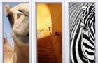 Designerskie naklejki 3D na drzwi