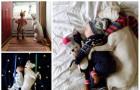 Niezwykła przyjaźń psa ze schroniska z dzieckiem poruszyła miliony internautów