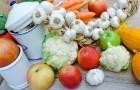 Wegetarianizm a pełnowartościowe białko