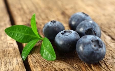 Borówka amerykańska - źródło cennych składników odżywczych