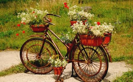 Doniczki ogrodowe - moda na zielony design