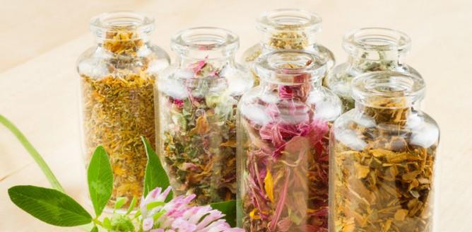 5 ziół łagodzących objawy menopauzy