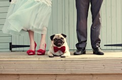 Nietypowa sesja ślubna - 5 super pomysłów!