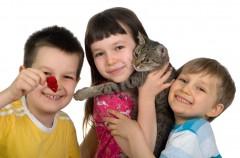 Pan Kotek a alergia u dziecka