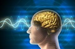 Trudne pojęcia medyczne - neurologia