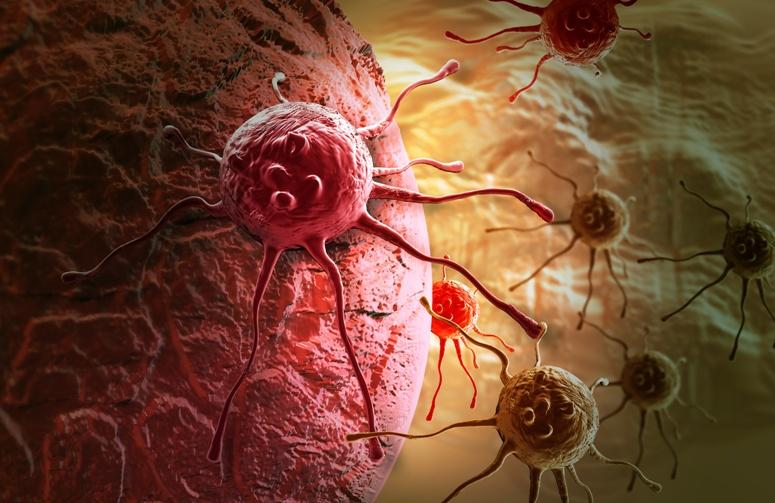 Фолиевая кислота - биомаркер рака?
