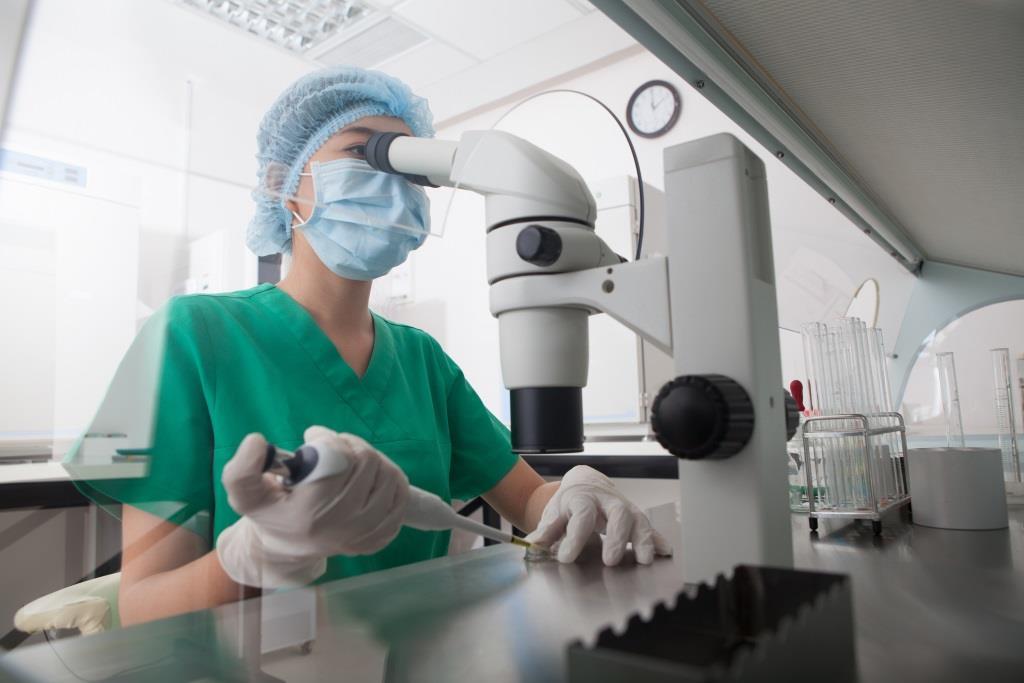 Grzybica układowa - inwazyjne zakażenie grzybicze, mikroskop