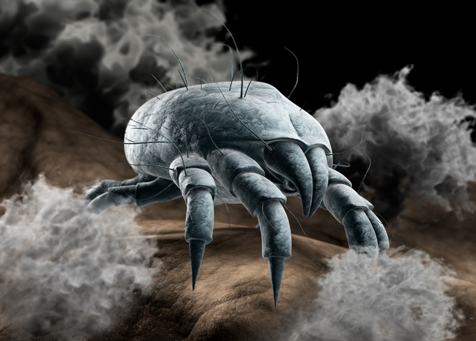 Как вылечить аллергию на клещей домашней пыли?