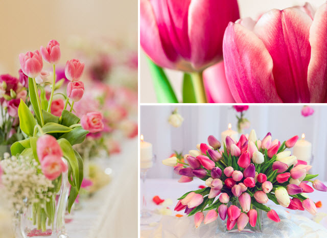 Tulipany Na ślub Organizacja I Formalności Polkipl