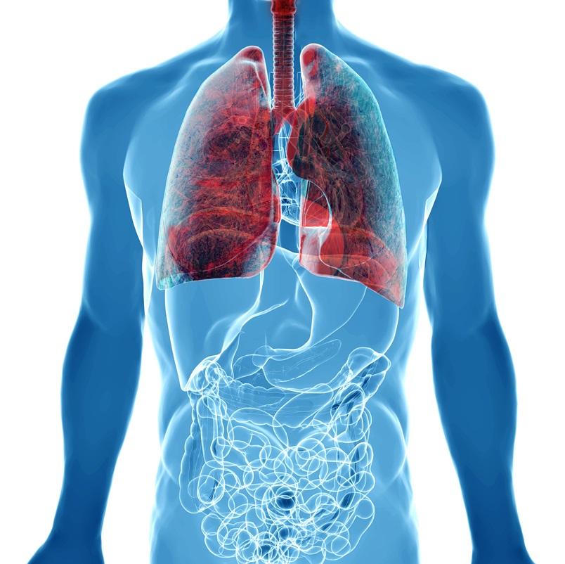 Как очистить дыхательную систему от остаточной пыли?