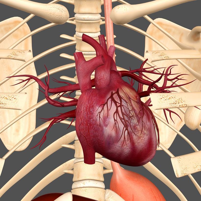 randki z chorobą serca