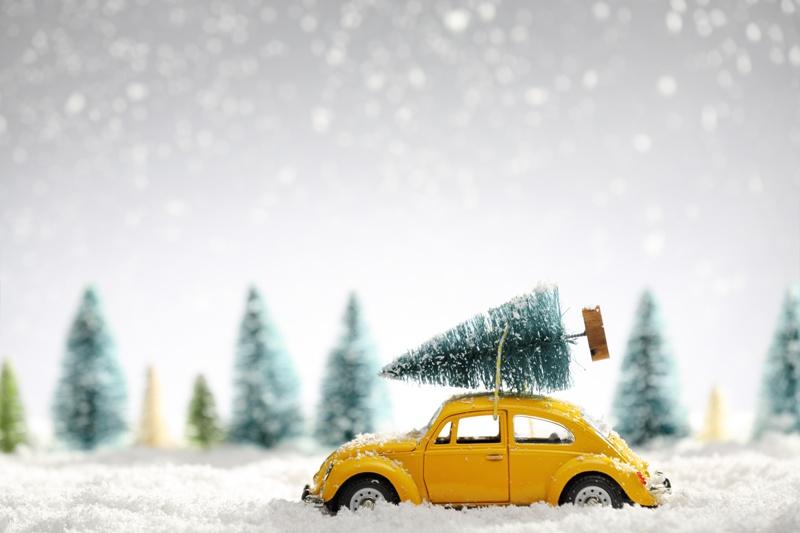 śmieszne życzenia świąteczne