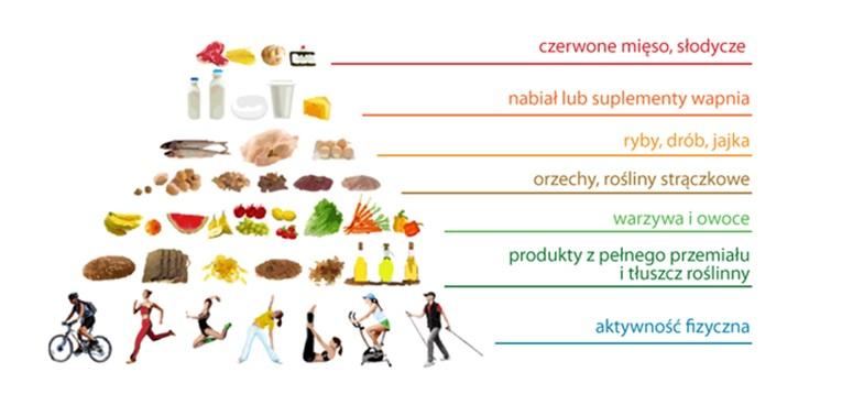 piramida żywienia a płodność