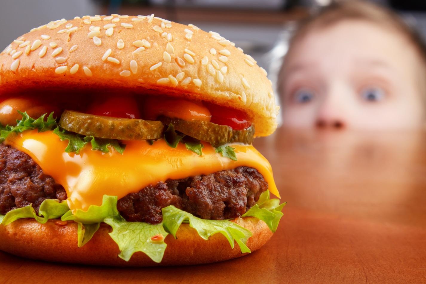 hamburger co zawiera