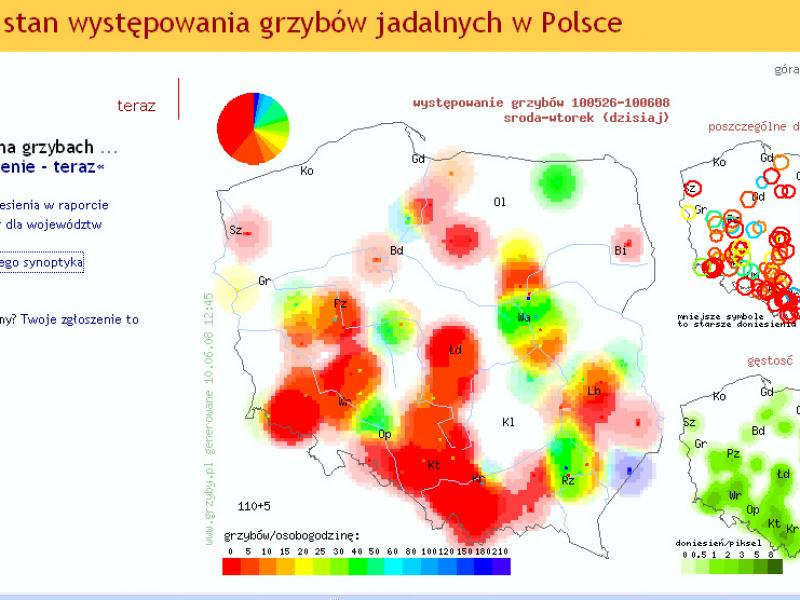 Mapy występowania grzybów - gdzie szukać?