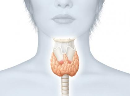 Czy nadczynność tarczycy lub przytarczyc powoduje osteoporozę?