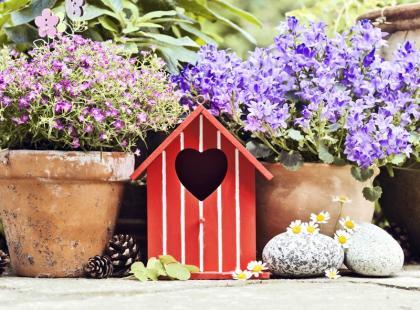 Chcesz aby w twoim ogrodzie pachniało zniewalająco? Oto 12 gatunków najmocniej pachnących kwiatów
