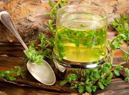 Bacopa monnieri – indyjskie zioło o wyjątkowej mocy zdrowotnej!
